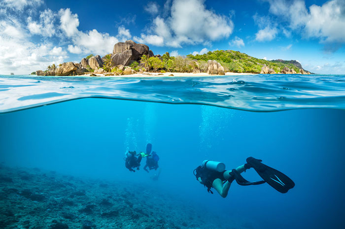Explore stunning Seychelles dive sites with your team