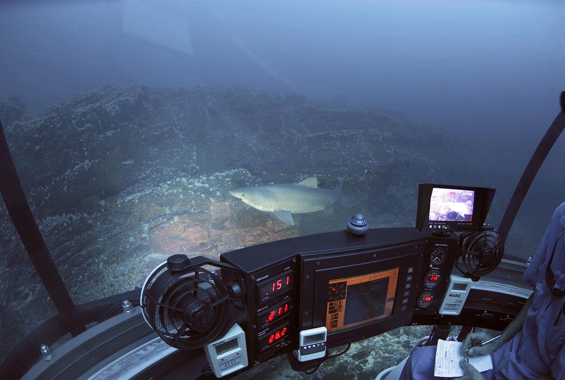 Image Courtesy of Undersea Hunter Group
