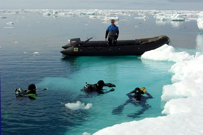 Ice diving in the polar regions