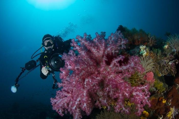 Diver and Camera - Raja Ampat