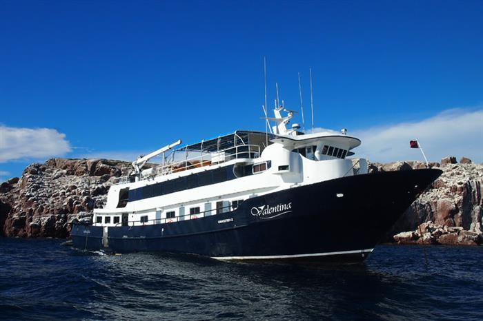 Valentina Liveaboard - Sea of Cortez