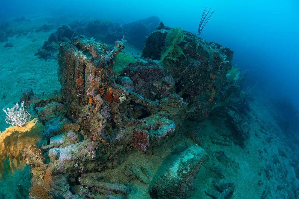 Artificial Reef Solomon Islands - Taka Liveaboard