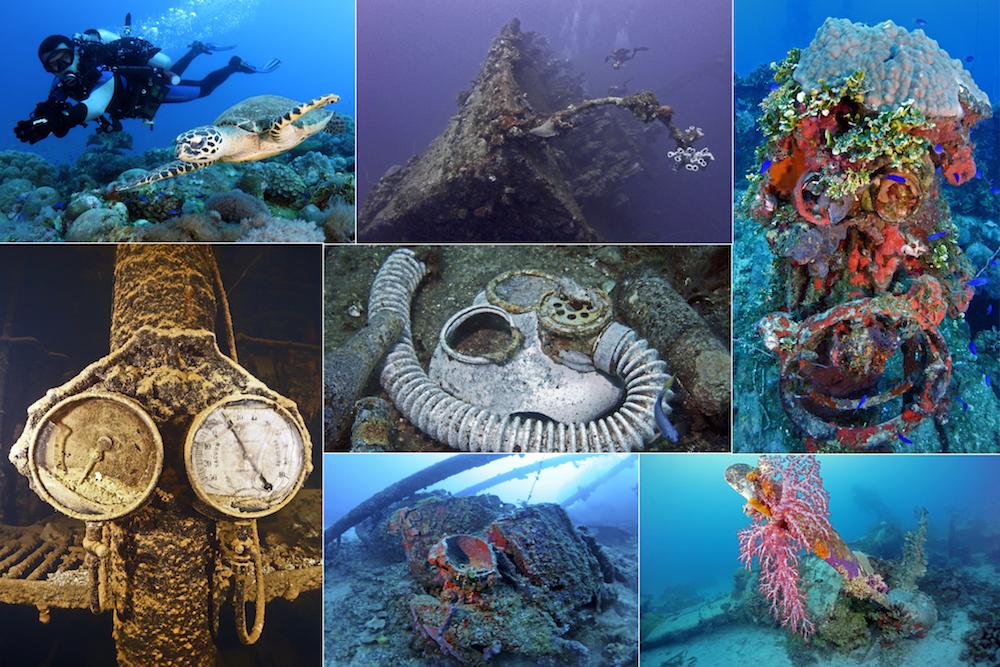 Micronesia Underwater