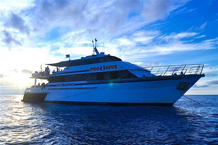 Pro Dive Cairns Fleet