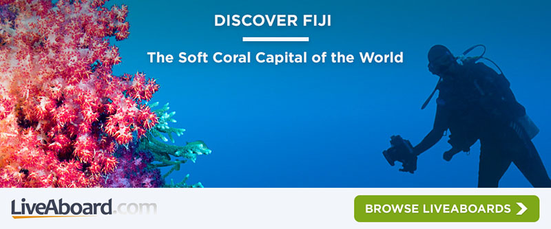 Discover Fiji Banner