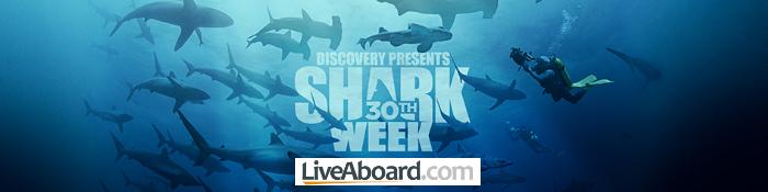 sharkweek_banner