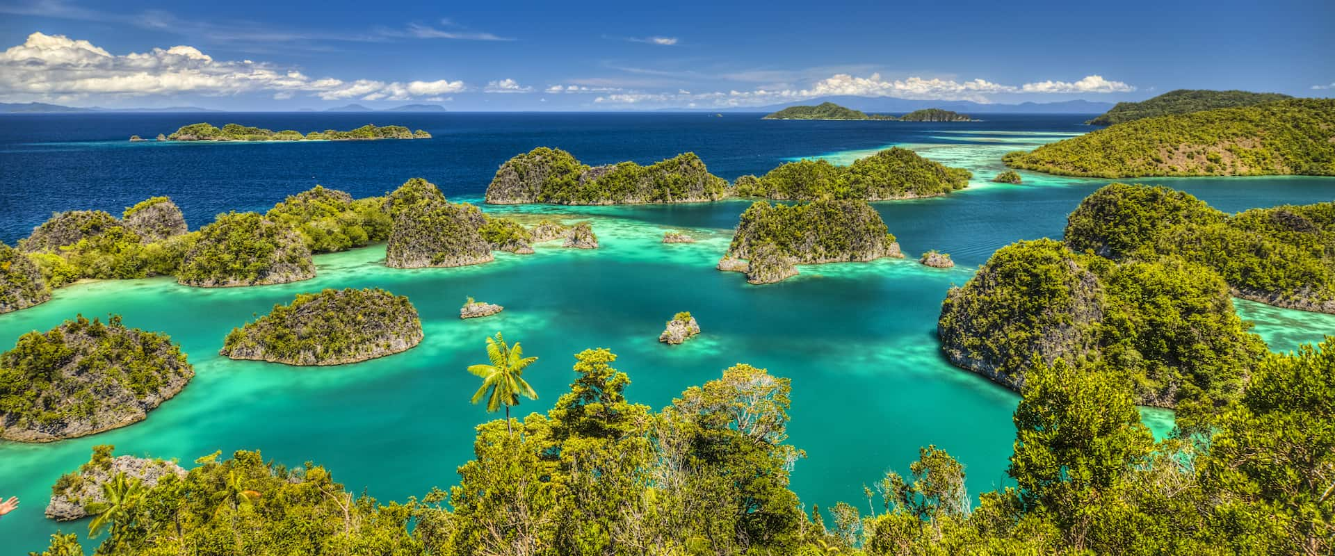 Raja Ampat Liveaboard Diving